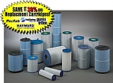 Hayward CX 1100 - 100 sq. ft. , filter